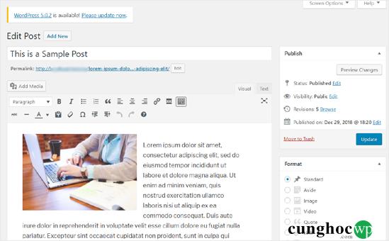 cap-nhat-bai-viet-wordpress-cu-bang-gutenberg-block-editor