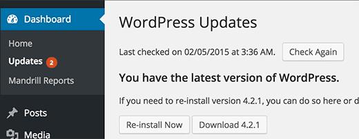 Cập nhật WordPress