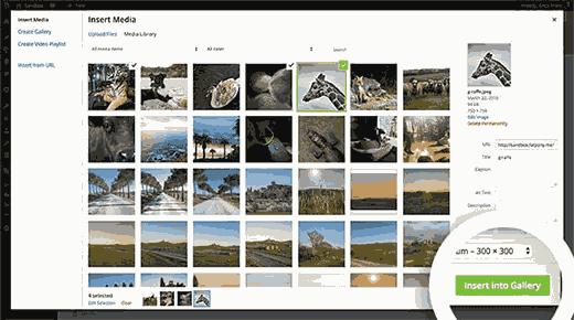 Tạo phòng trưng bày hình ảnh trong WordPress