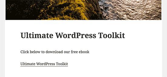 Liên kết tải xuống tệp PDF trong một bài đăng trên blog WordPress
