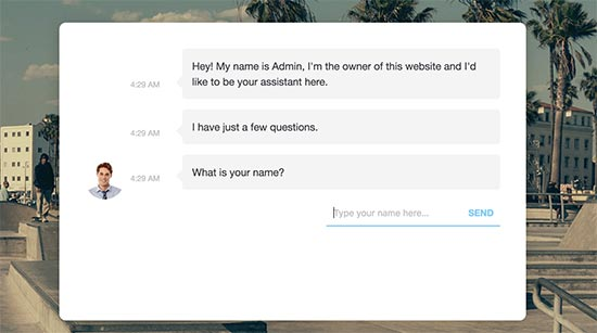 Chatbot preview