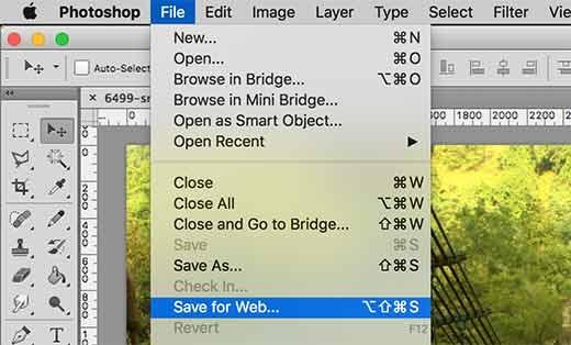 Lưu cho web trong Adobe Photoshop