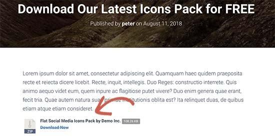 Tải xuống tệp trong bài đăng WordPress