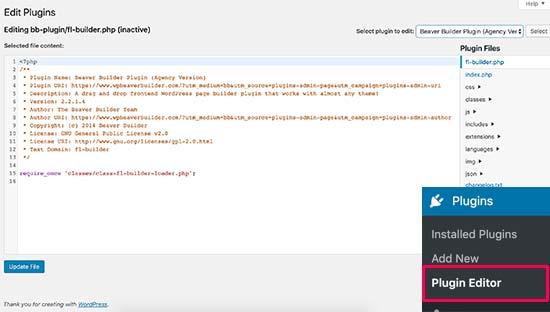 Plugin editor in WordPress