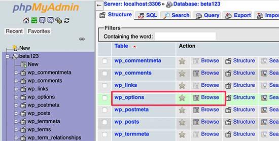 WordPress options table