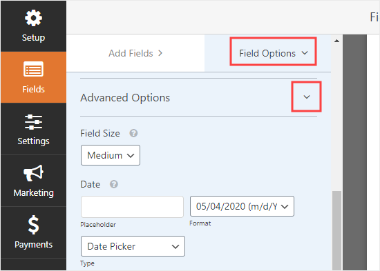 Viewing and changing the Advanced Options for the Date/Time field