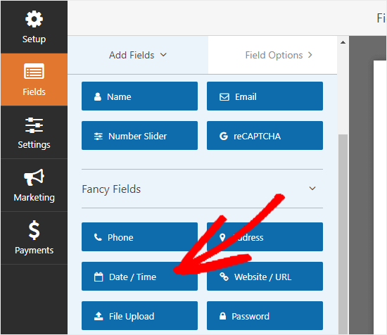 The Date / Time field under the Fancy Fields section
