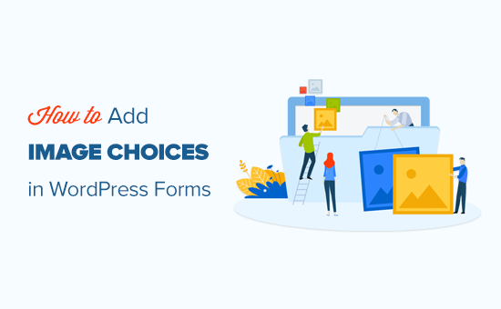 How to easily add image choices in a WordPress form