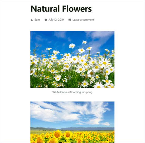 Thêm nhiều hình ảnh trong bài đăng WordPress mà không cần tạo thư viện