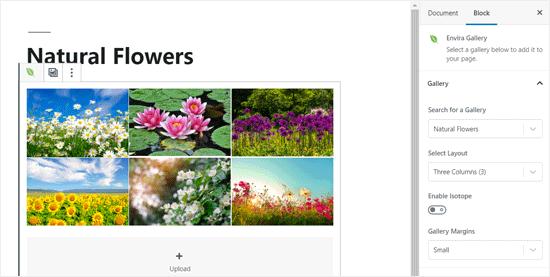 Thư viện Envira đã được thêm vào WordPress Post Editor