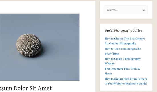 Các bài đăng nổi bật trong tiện ích văn bản thanh bên WordPress