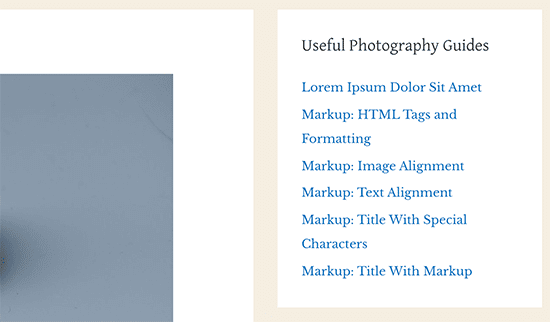 Các bài đăng nổi bật được hiển thị bằng tiện ích menu điều hướng