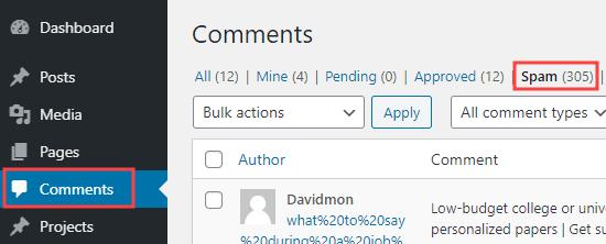 Nhấp vào tab Spam để xem danh sách các nhận xét đã bị đánh dấu là spam