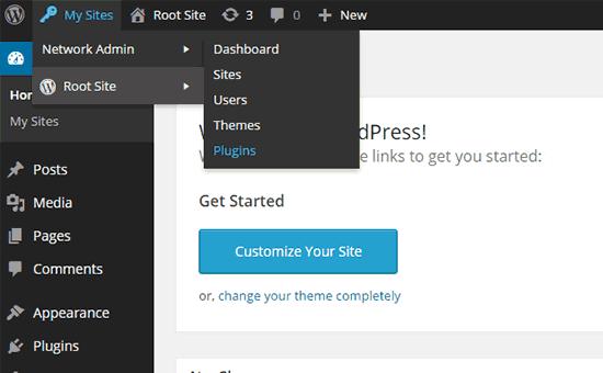 Cài đặt plugin trên mạng multisite